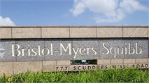 Bristol-Myers Squibb Appoints Boerner to EVP