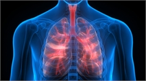 Lung Cell Transplants in Mice Show Potential for Treating Lung Damage in Humans