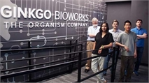 The Next Biotech 'Unicorn,' Ginkgo Bioworks, Just Nabbed Another $275M