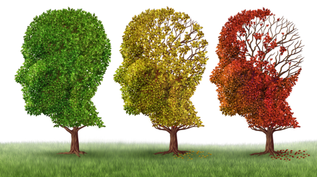 3 trees in shape of human heads, one grean and full, one yellow and half full, and one red with a lot of leaves missing