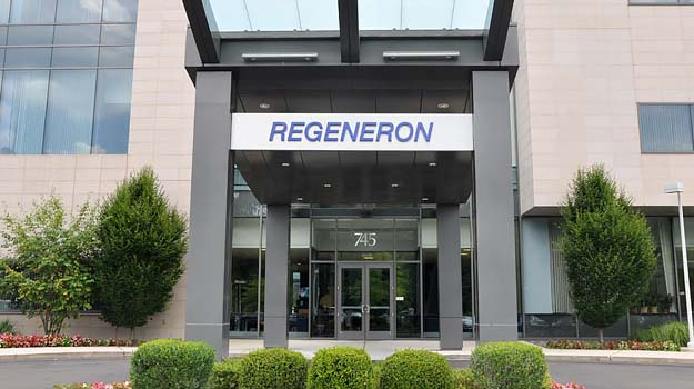 Regeneron and Teva's Fasinumab Hits Primary and Secondary Endpoints in Late-Stage Sub Study