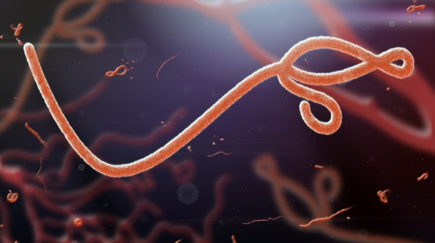 Researchers Continue to Develop Antivirals for Ebola, Zika, Other Infectious Diseases
