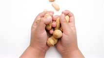 Aimmune's Peanut Allergy Treatment Delayed as Government Shutdown Continues