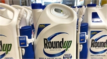 Second Lawsuit Alleging Bayer's Roundup Led to the Development of Cancer Begins