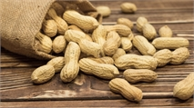 Potential Pricing of Peanut Allergy Treatments Too High, Report Says