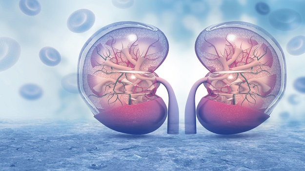 National Kidney Month: A Look at Biopharma's Progress in Kidney Diseases