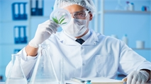 Cannabis-Based Drug Companies Hopeful Epidiolex Will Pave the Way for Future Approvals