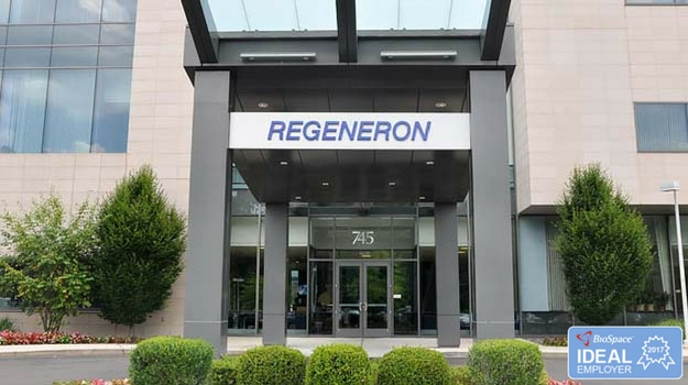 Regeneron and Sanofi's Blockbuster Drug Hits the Mark in Two Phase III trials