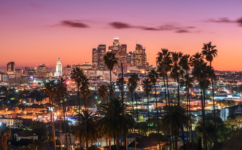 Sunset of downtown LA skyline and palm trees