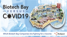 Biotech Bay Companies Fighting Against COVID-19