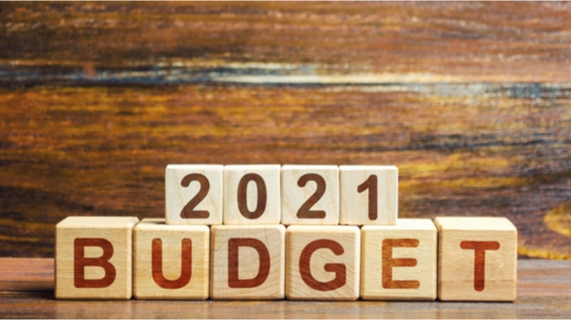 budget 2021 - photo #8