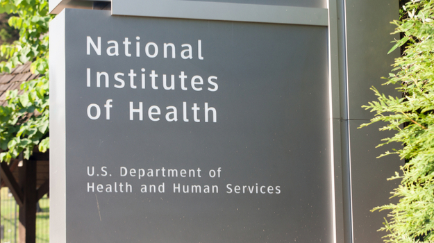 NIH to Spend $20 Million on a Search for the Development of Alternatives to Fetal Tissue