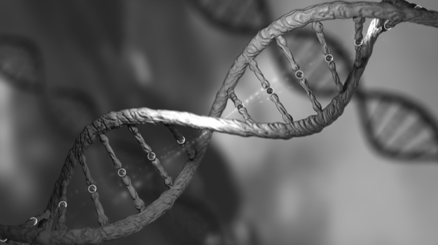 Leading Scientists Call for a Moratorium on Specific Types of CRISPR Editing